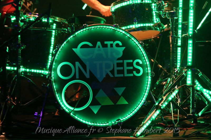 cats-on-trees1