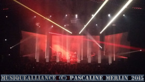 Fauve concert Nice 2015 (8)